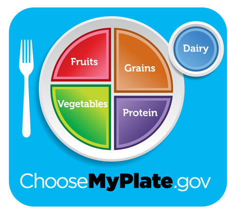 choosemyplate.gov: picture of a plate that includes  fruits, vegetables, grains, protein, and dairy