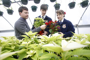 Agriculture students participate in FFA